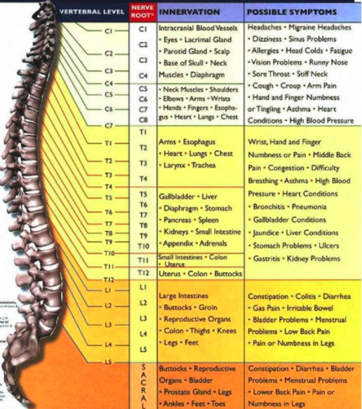 Table of spinal issues